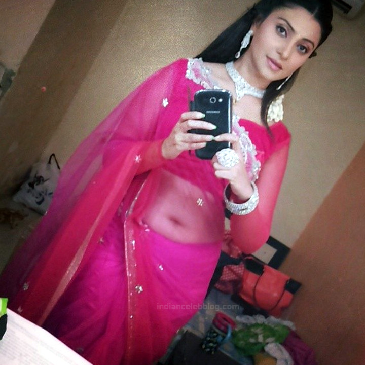 Aleeza Khan 036 Hindi TV Actress hot transparent saree pic