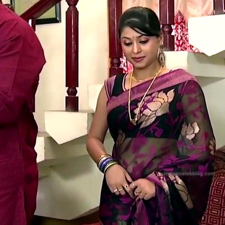 Nagashree Tamil TV Actress Chandralekha S1 10 hot saree photo