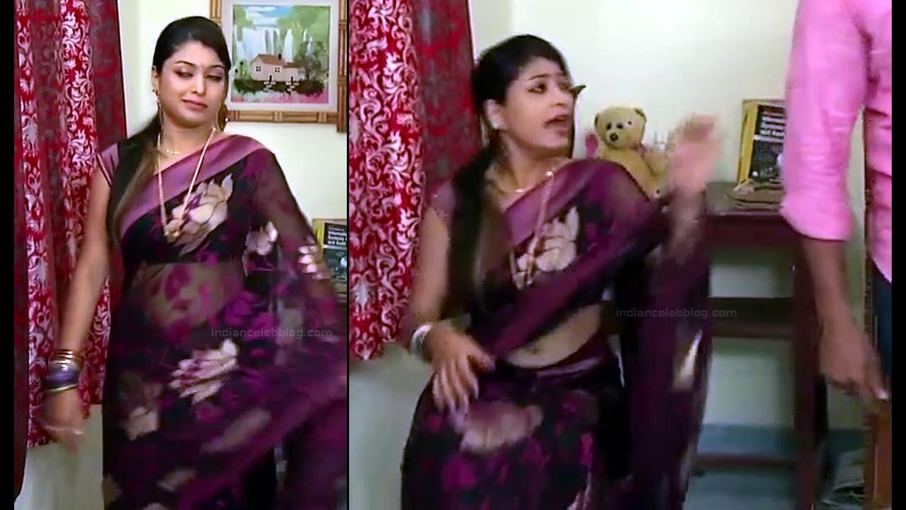 Nagashree Tamil TV Actress Chandralekha S1 12 hot saree photo