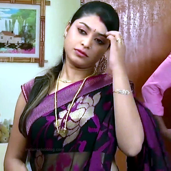 Nagashree Tamil TV Actress Chandralekha S1 13 hot saree photo