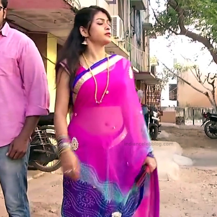 Nagashree Tamil TV Actress Chandralekha S1 14 hot saree photo