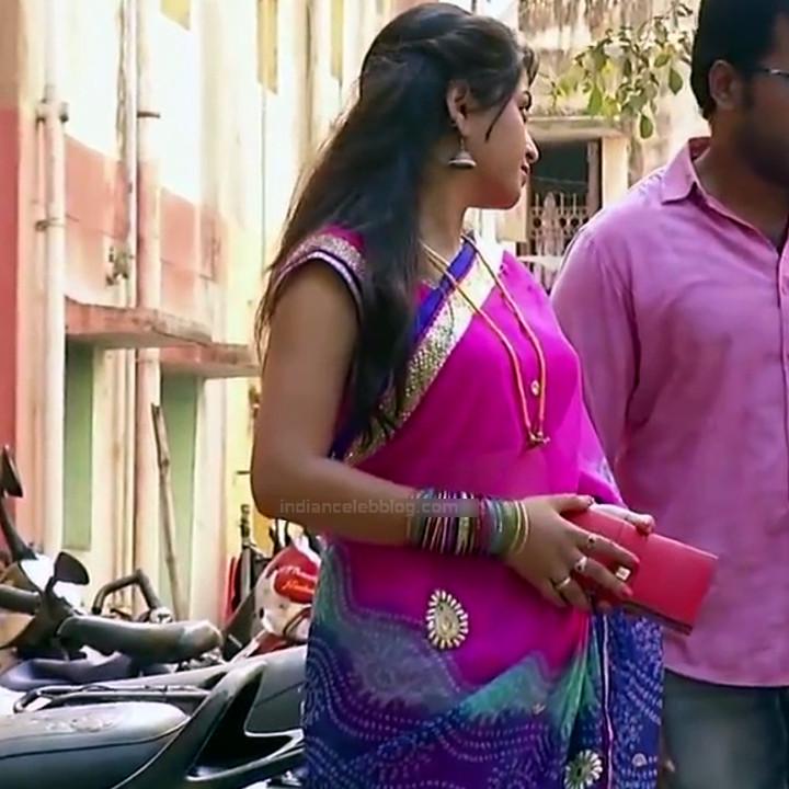 Nagashree Tamil TV Actress Chandralekha S1 19 hot saree photo