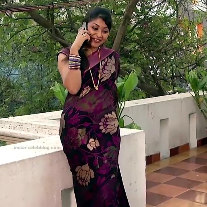 Nagashree Tamil TV Actress Chandralekha S1 4 hot saree photo