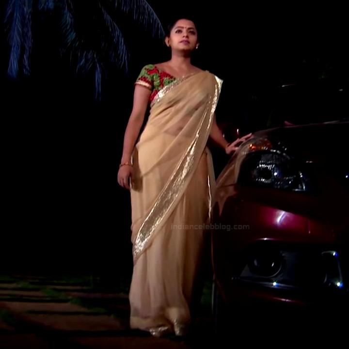 Navya Swamy Telugu TV Actress NaaPMS1 8 hot sari photos