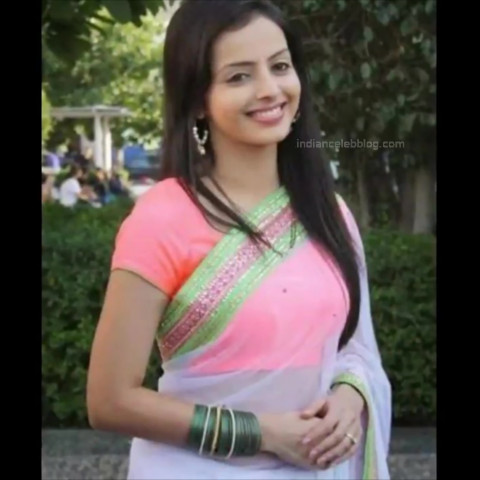 Shrenu Parikh Hindi TV Actress YTComp3 5 Hot saree navel pics