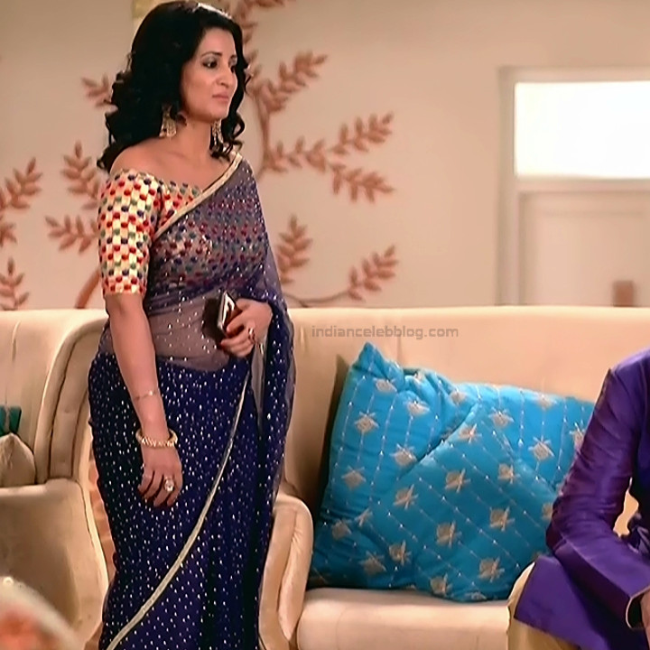 Sonica Handa Hindi TV Actress SavitriDCHS1 1 hot saree pics