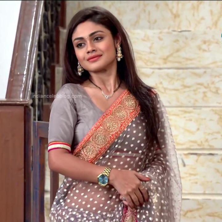 Sreejita De Hindi TV Actress TumhiHBS2 11 Hot Saree Photo