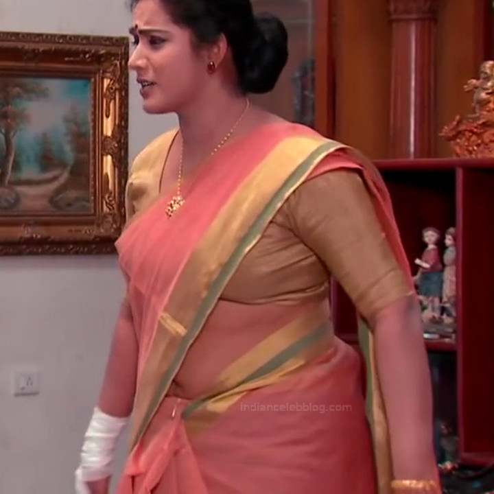 Telugu TV serial mature actress Comp2 8 hot saree photo