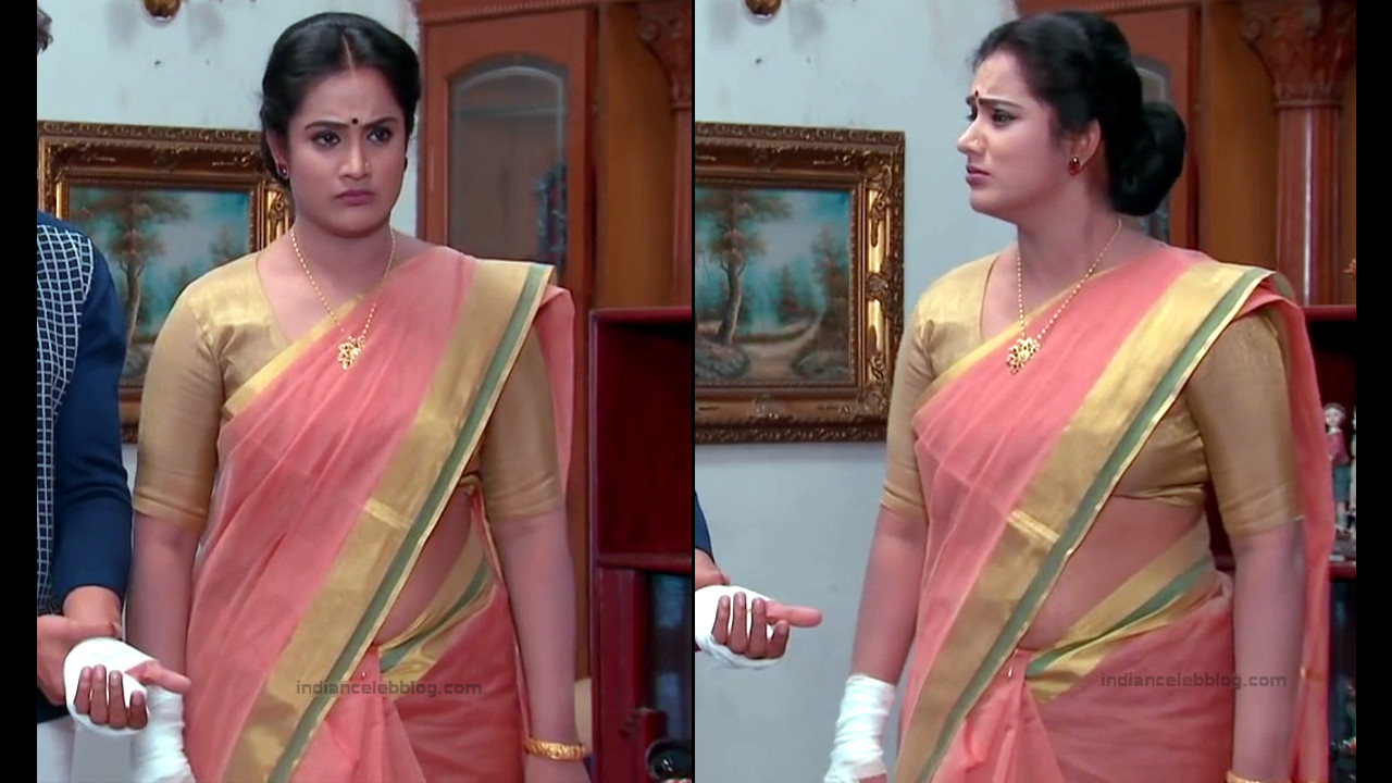 Telugu TV serial mature actress Comp2 9 hot saree photo