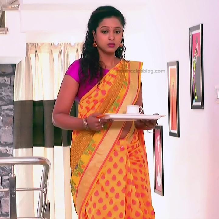 Apoorva Bharadwaj Kannada Serial Sathyam SSS1 16 hot saree photo