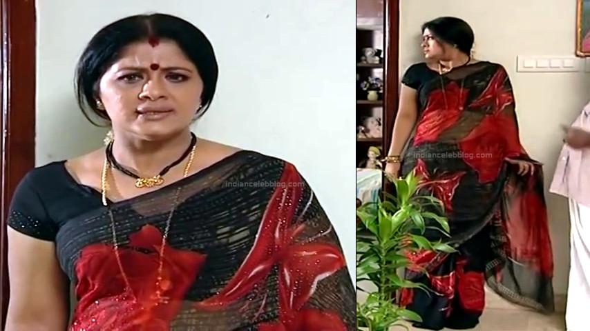 Sudha chandran Tamil TV actress PonDTS1 14 hot saree photo