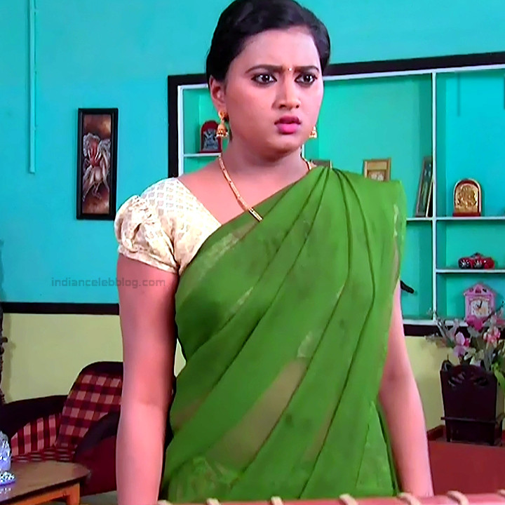 Princy B Krishnan Telugu Tv actress Kumkuma PS2 1 hot saree photo