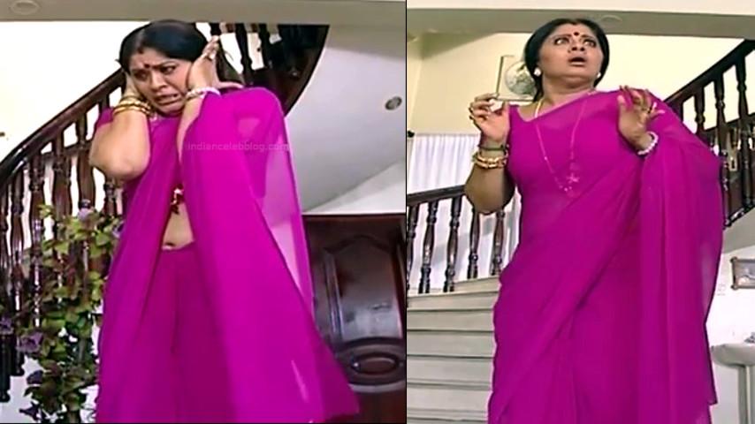 Sudha chandran tamil tv actress Pondatti TS2 11 hot sari pics