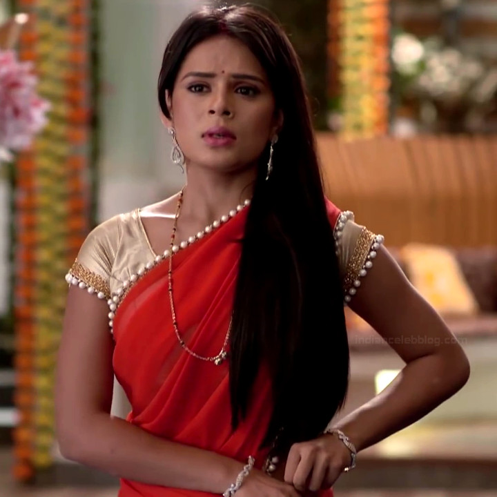 Sonal Vengurlekar hindi tv celeb 5 hot saree photo