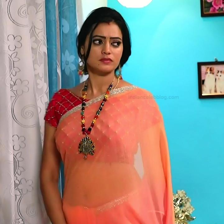 Sowmya rao Tamil tv actress Nenjam MS1 1 hot saree photo